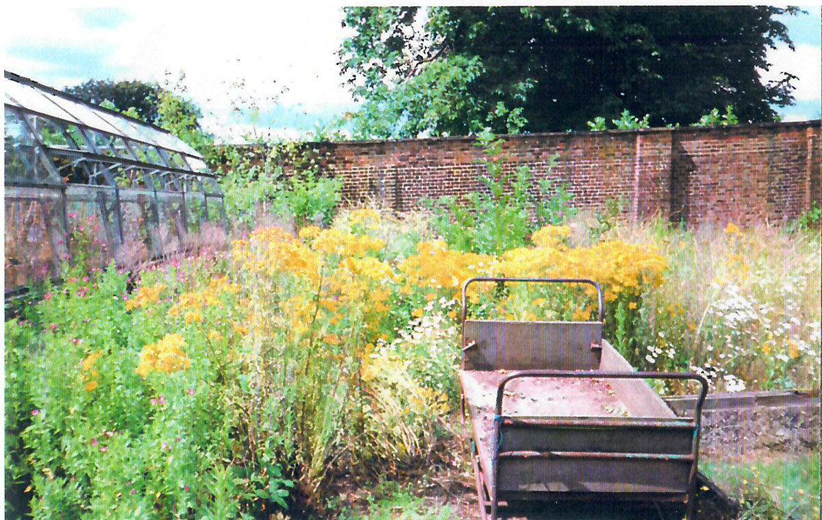 Lower greenhouse c2000