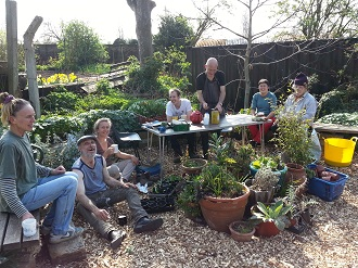 All about compost brockwell park community greenhouses for Gardening volunteering london