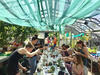 Make your own Terrarium with Jar and Fern - Brockwell Park